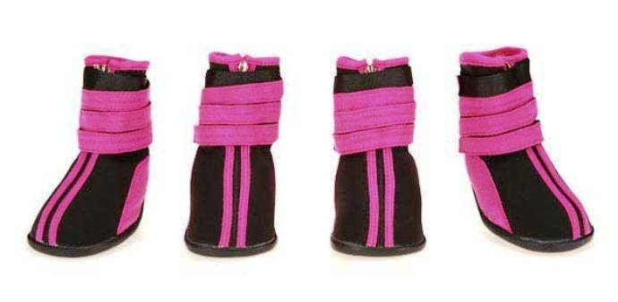 Fashionable High Top Dog Boots - Rubber Soled 1b8edadee4a0